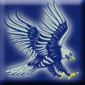 dickinsonstateblue hawks