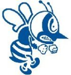st ambrose fighting bees