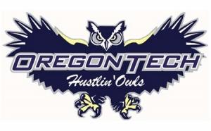 hustlin-owls1