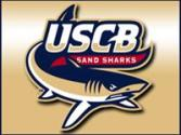 south carolina beaufort sand sharks