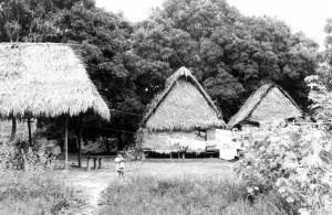 Tupari village