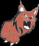 lindenwood-belleville lynx