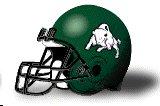 Bethany Bison helmet new