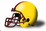 Charleston Golden Eagles helmets