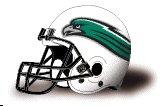 Northeastern State helmet