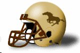 southwest minnesota helmet