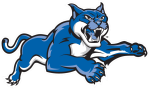 New York Tech Wildcats