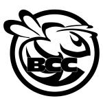 Bristol College Bees