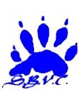 San Bernardino Valley WOlverines logo