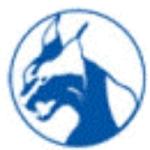Wayne County Wildcats