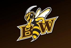 Baldwin Wallace College Yellow Jackets logo