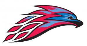 mesa college thunderbirds logo BIG