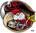 Barry Buccaneers logo