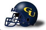 Graceland Yellow Jackets helmet