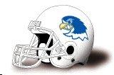 Notre Dame College falcons helmet