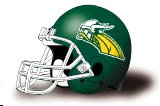 Hudson Valley Vikings helmet