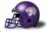 Olivet Nazarene Tigers helmet NEW