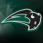 Nichols College Bison logo
