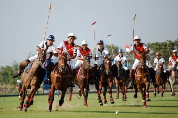 Polo Teams In Action