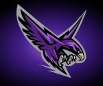 Montgomery College Raptors