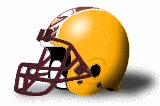 Charleston Golden Eagles helmet NEW