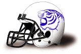Dakota Wesleyan Tigers helmet NEW