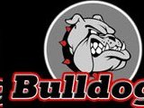 Bunker Hill College Bulldogs