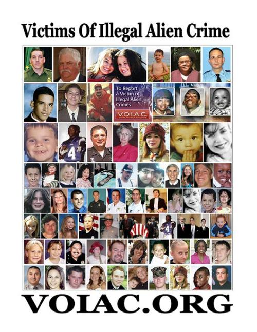 Victims of Illegal Immigrants