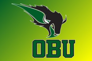 Oklahoma Baptist University Bison BIG