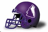 College of Idaho Coyotes NEW HELMET