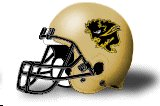 Manitoba Bisons helmet