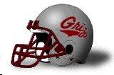 Montana Grizzlies helmet