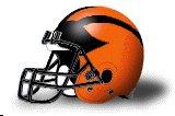 Princeton Tigers helmet
