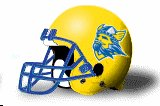 Bethany College Swedes NEW