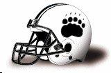 bowdoin-college-polar-bears-helmet