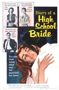 diary-of-a-high-school-bride
