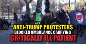 anti-trump-hysteria-2
