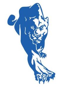 York College logo Panther full