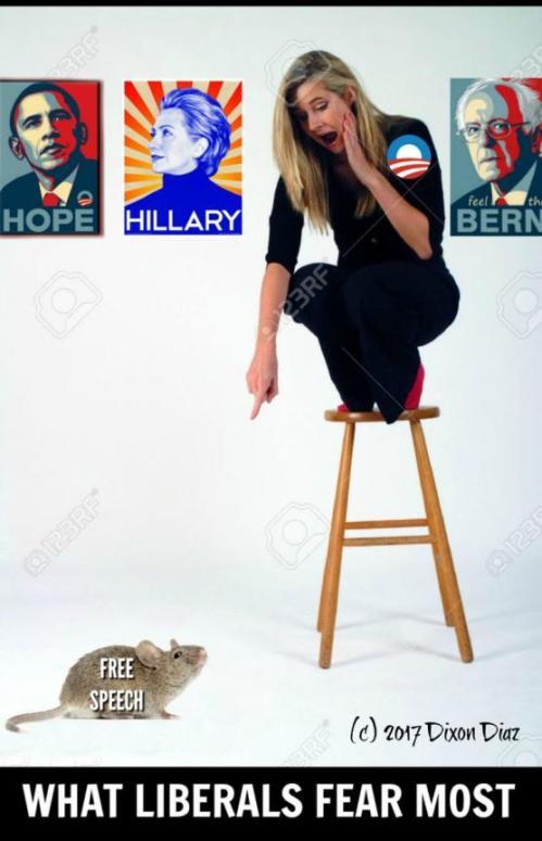 political cartoon liberal on stool