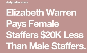 Elizabeth Warren interns