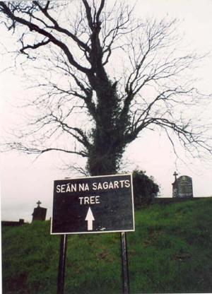 Sean na Sagart's tree