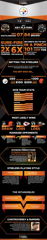 Steelers infograph