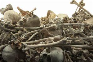 pile of human bones