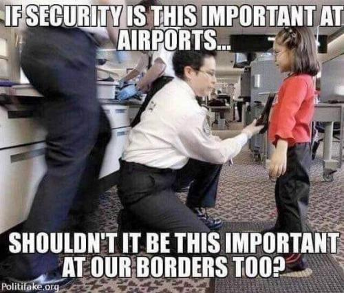 illegal immigration security