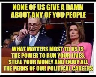 pelosi and schumer love illegal immigrants