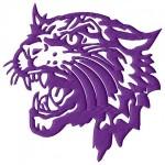 Bethel (TN) Wildcats logo