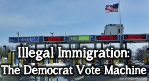 illegal immigration democrat vote machine