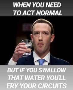 Mark Zuckerberg act normal