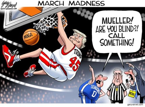 Mueller comedy basketball ref