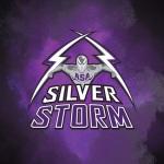 ASA Miami Silver Storm logo